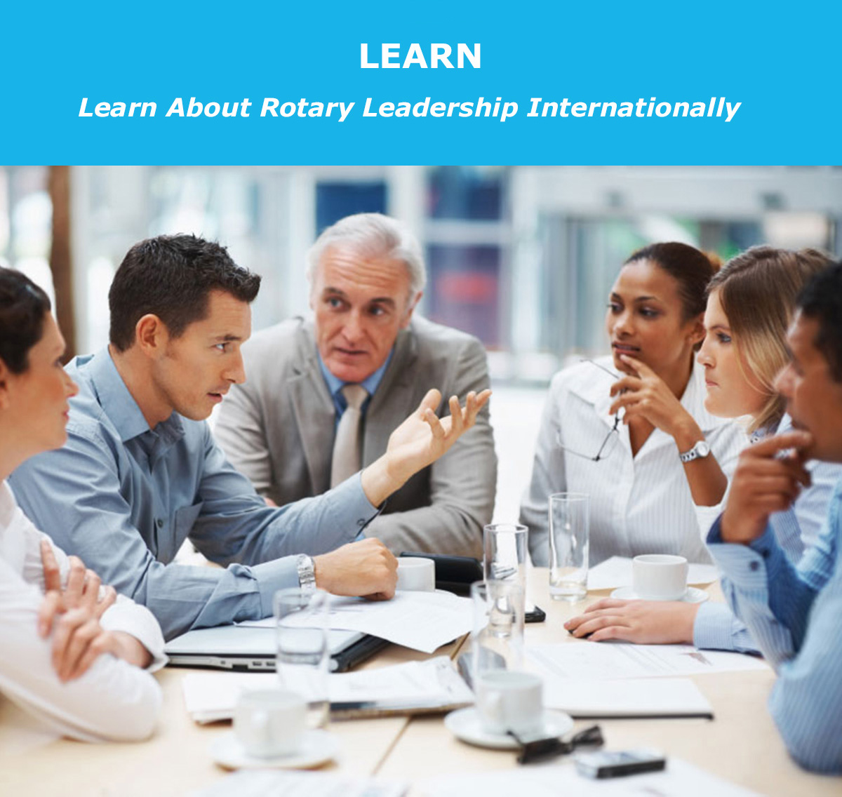 Learn About Rotary Leadership Internationally